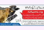 Impure-Milk-Pakistan-1